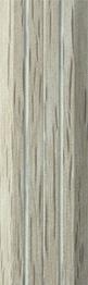 Белёный дуб
